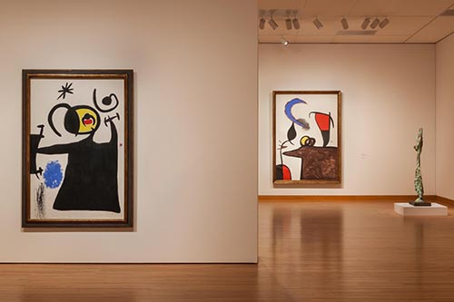 Miro - The Exprerience of Seeing