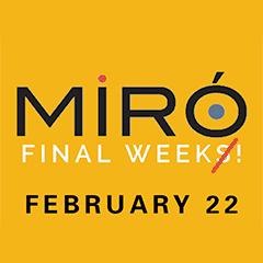 Miro Final Week