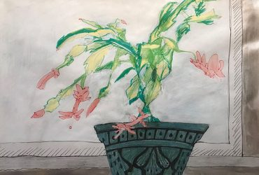 A blooming Christmas cactus is the subject of this sketch on paper by Durham artist Rachel Goodwin.