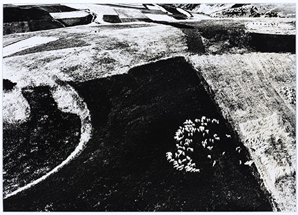 Mario Giacomelli, Untitled (Landscape) from the series Paesaggi, 1964-1974. Gelatin silver print, 18 x 21 ½ inches (45.7 x 54.6 cm). Gift of Ippy and Neil Patterson in honor of Patricia Leighten.