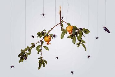 Hong Lei, Speak, Memory of Pomegranate, 2005. Chromogenic print, 37 1/8 x 47 1/8 inches (94.3 x 119.7 cm). Collection of the Nasher Museum. Museum purchase.