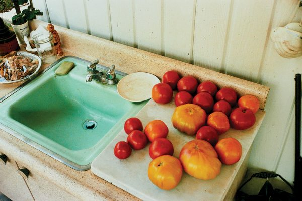 William Eggleston, Untitled from the series The Democratic Forest, c. 1983-1986. Pigment print. Gift of Jennifer McCracken New and Jason G. New, in honor of Kristine Stiles, with gratitude for her inestimable inspiration. © Eggleston Artist Trust.