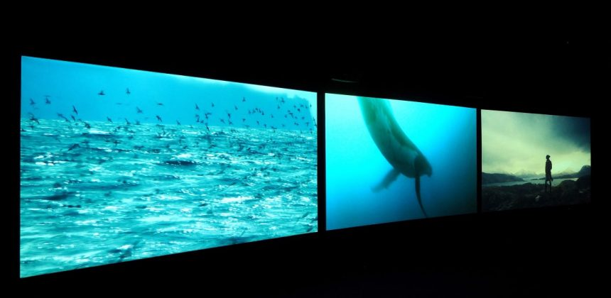 John Akomfrah, Vertigo Sea (installation view), 2015.