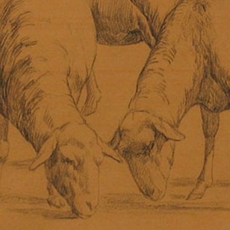 Rosa Bonheur, A Group of Six Sheep (detail), 19th century. Graphite on paper, 9 3/8 x 11 ½ inches. Collection of the Nasher Museum of Art at Duke University. Gift of George and Alice Welsh, 2001.15.5.