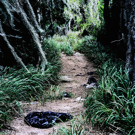 Susan Harbage Page, Trail with Black Plastic Bags, Santa Ana Wildlife Refuge, Texas from the U.S. – Mexico Border Project, 2007. Archival pigment print, 42 x 42 inches (106.7 x 106.7 cm). Collection of the Nasher Museum of Art at Duke University, Durham, North Carolina. Gift of the artist in honor of Emily Kass, 2014.8.3. © Susan Harbage Page.