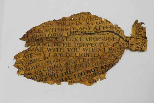 Xu Bing, Golden Leaf, 1999. Printed text on tobacco leaf, 24 x 13 x 1/4 inches (61 x 33 x 0.6 cm). Gift of Xu Bing Studio.